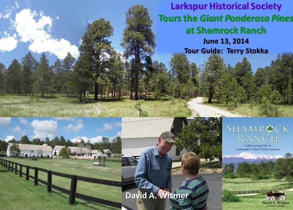 Shamrock Ranch 1