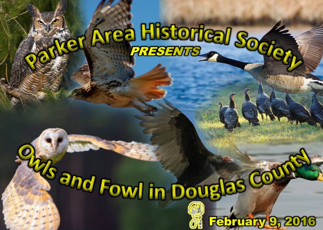 Owls and Fowl of Douglas County PAHS February 9, 2016