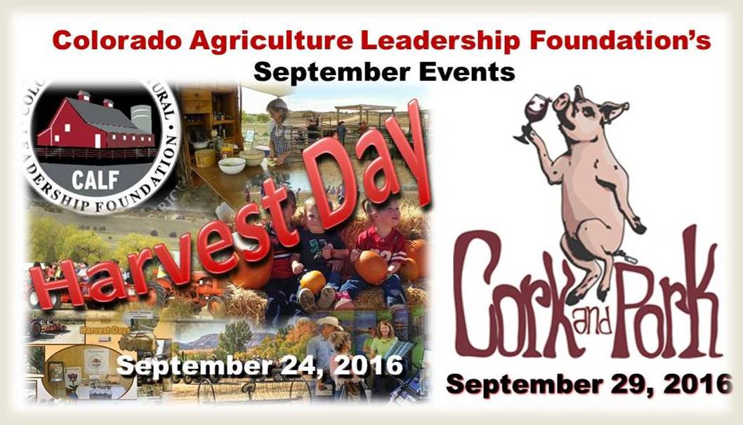CALF Sept 2016 Events