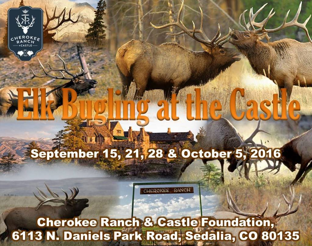 Elk Bugling at the Castle 2016